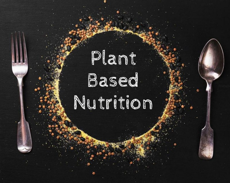 plant based nutrition 2